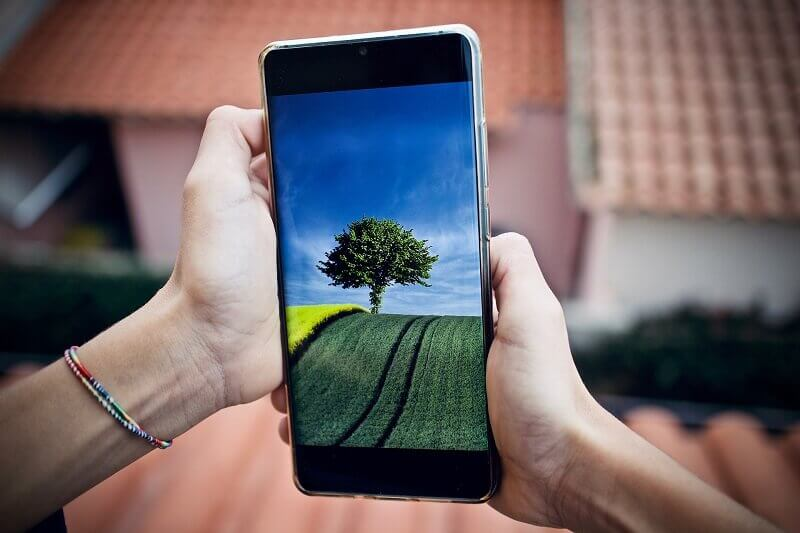 Looking at the image of nature on a smartphone